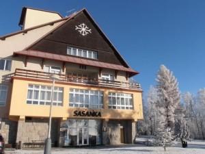сасанка-1